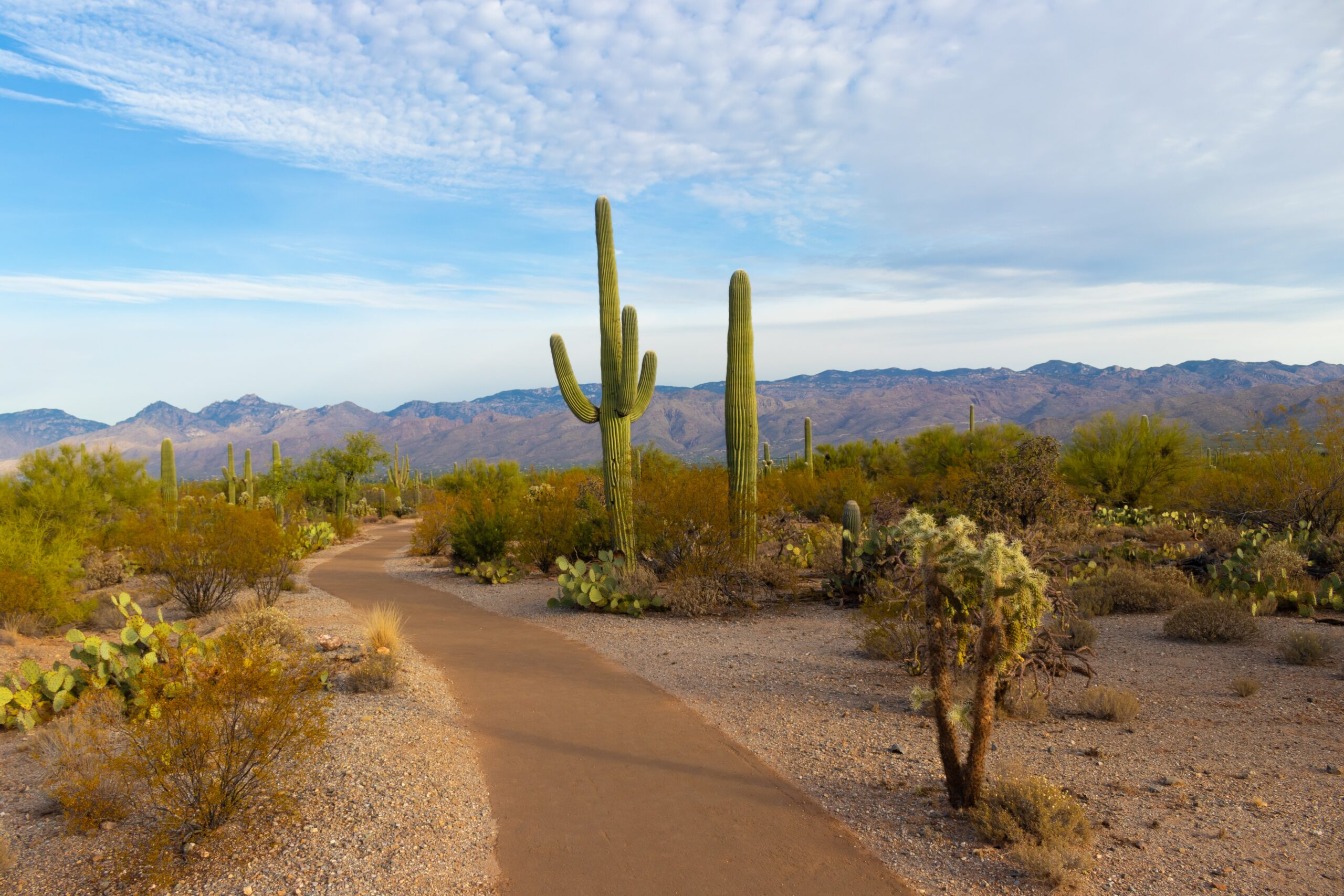 Hiking during a Scottsdale girls weekend.