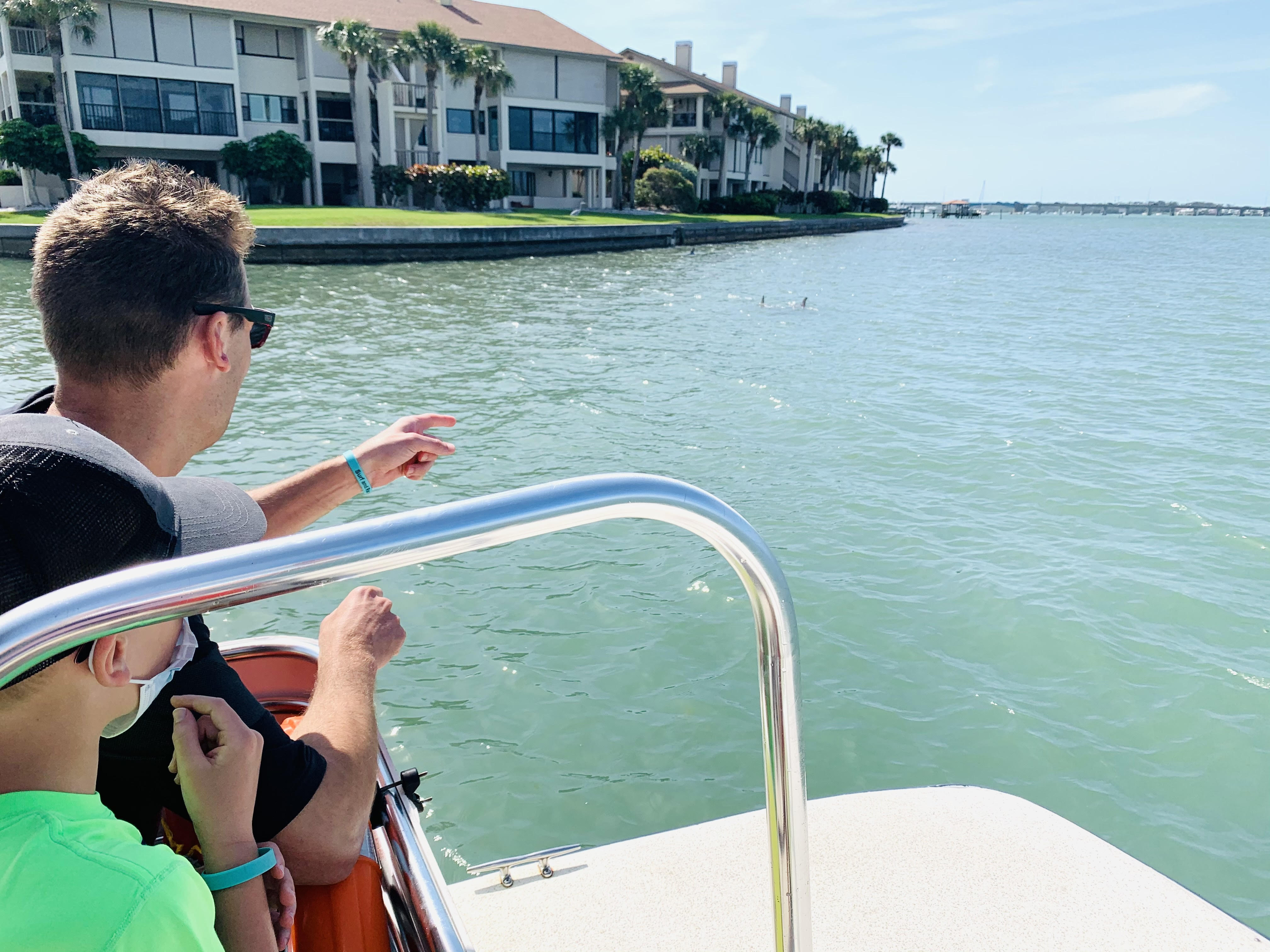 Dolphin Tour; Discover the best things to do on Anna Maria Island from Top US Family Travel Blog, Travel With A Plan!