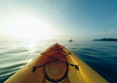 Sarasota Kayak Tours